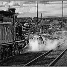 Steam train leaving the Station by Wolf Sverak