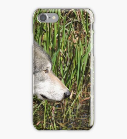 Little Reed iPhone Case/Skin