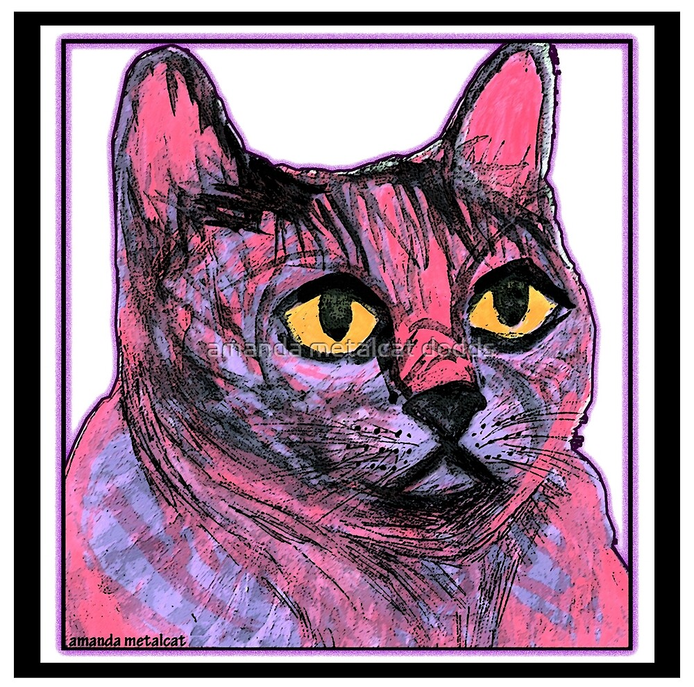 Kitty in Purple and Pink by amanda metalcat dodds