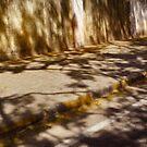 the fallen shadows. by queenenigma
