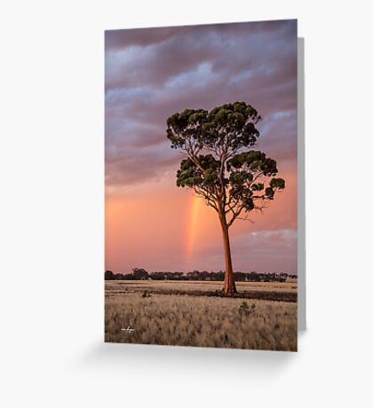 Majestic Salmon Gum Greeting Card