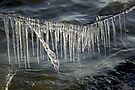 Ice Curtain by Jo Nijenhuis