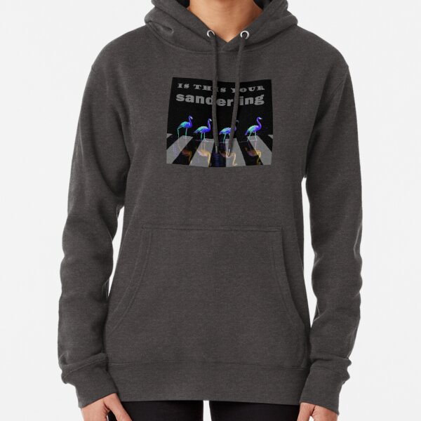Float… float on. Is this your sanderling? Wade in the water, children. Pullover Hoodie