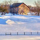 Snowy Farm by James Brotherton