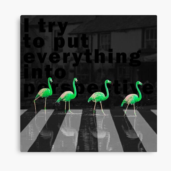 I try to put everything into perspective Canvas Print