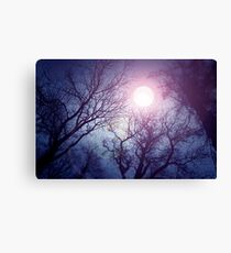 Dark enchanted photo of a full moon in the trees branches background. Blue and violet fairy-tale colors Canvas Print