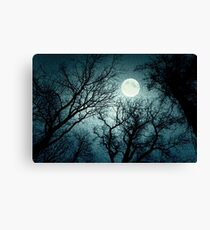 Dark enchanted photo of a full moon in the trees branches background. Blue fairy-tale colors Canvas Print