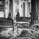 Augusta KY Benches B&W by Mary Carol Story