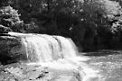 Hooker Falls - DuPont State Forest by Bill Wetmore
