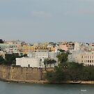 Puerto Rico  Island Caribbean - Port area, old walls by mikequigley