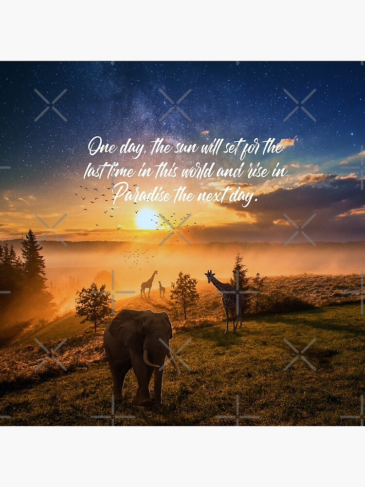 Sunrise In Paradise by JenielsonDesign