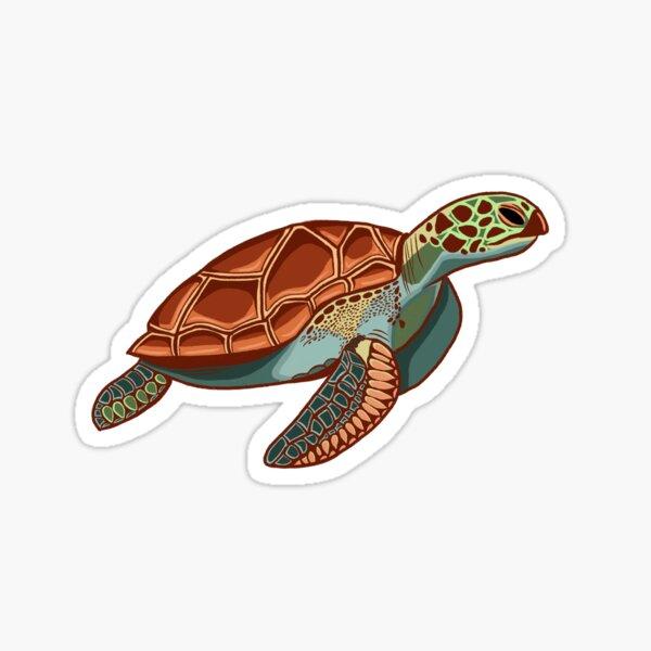 Turtle Surfing Surfer Cool Dude Turtle Cartoon Sticker Decal Graphic Vinyl Label