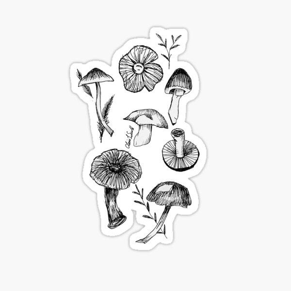 Mushrooms + Toadstools  Sticker
