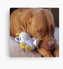 Pitbull Pose Canvas Print