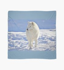 Arctic Wolf (Click and see large!) Scarf