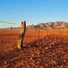 Outback Fence by Raymond Warren