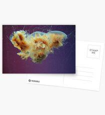 Swimming in a Purple Haze. Postcards