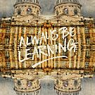 Always Be Learning Institut de France Paris Architecture by Beverly Claire Kaiya