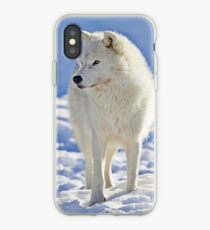 Arctic Wolf (Click and see large!) iPhone Case