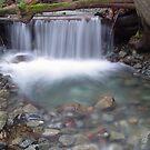 Tofino waterfall by aerdeyn