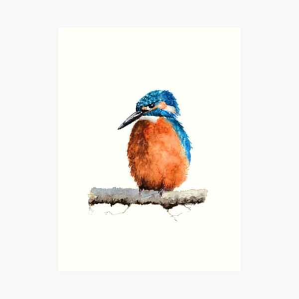 Watercolour Kingfisher sitting on Tree Branch Art Print