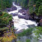 Wild River, Whistler, Canada by aerdeyn