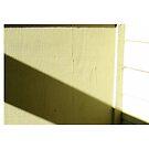 Diagonal Sunshine  by mmargot