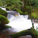 Marysville Cascades, Victoria by aerdeyn