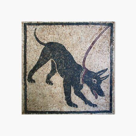 Cave canem- ancient Pompeii Art Board Print