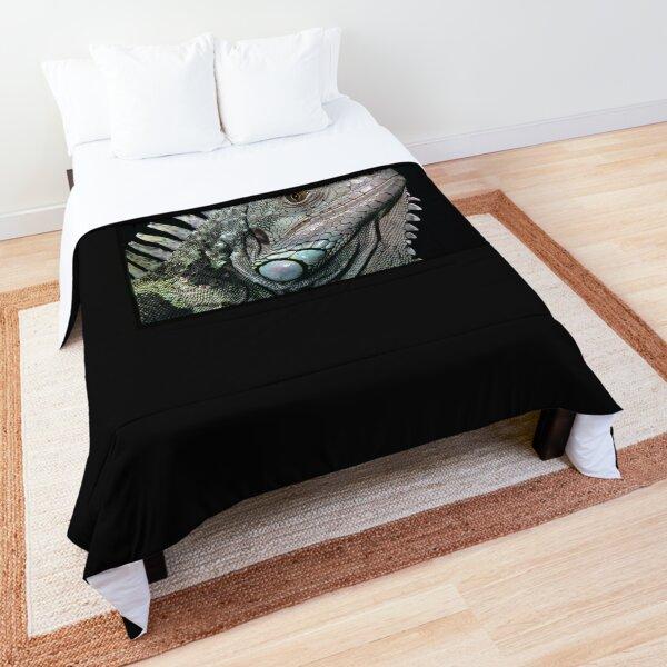 The Iguana Comforter