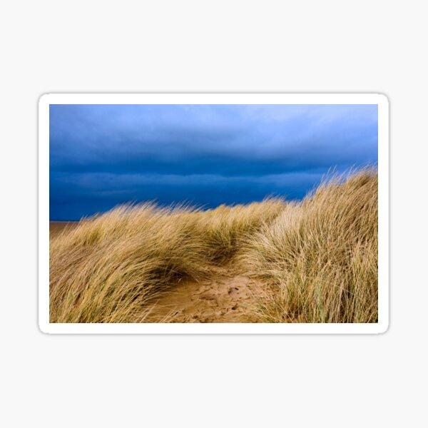 Sand Dunes, St. Annes Sticker