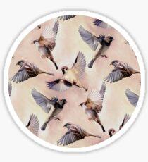 Sparrow Flight Sticker