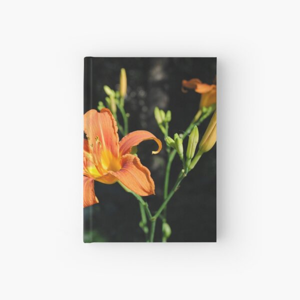 Last Sunbeam of a Summer''s Day Hardcover Journal