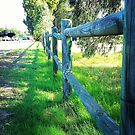 Fence Along the Way by Heather Goldsmith