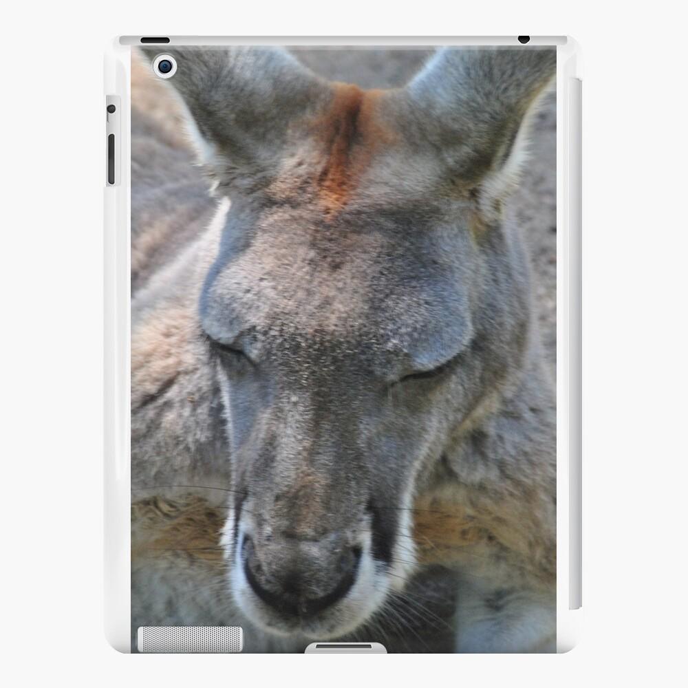 Snooze Roo iPad-Hüllen & Klebefolien