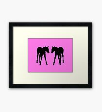 Foal, Colt, Baby Horses Silhouette on Pink Framed Print