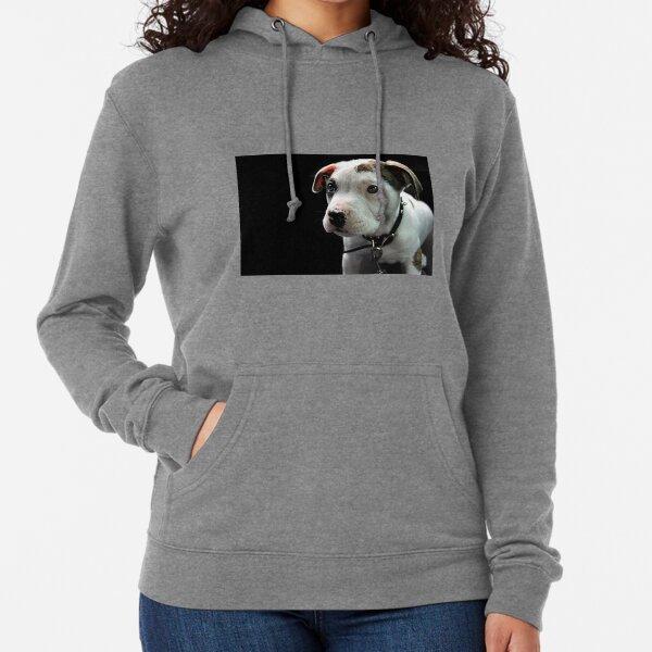 American Pitbull Terrier Zip Hoodie CafePress