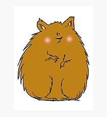 Fat hamster Photographic Print