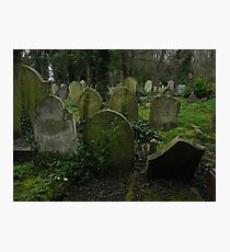 Highgate Cemetery Photographic Print