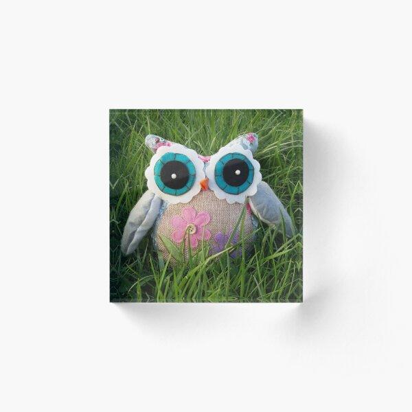 Grassy Owl  Acrylic Block