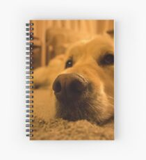 Max Spiral Notebook