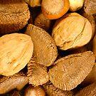 Mixed Nuts - Vertical by Elizabeth  Lilja