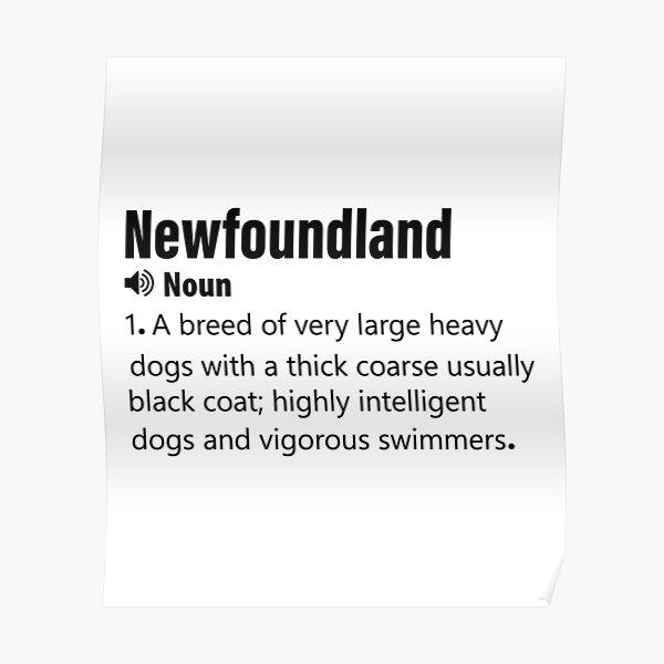 funny  Newfoundland definition Poster