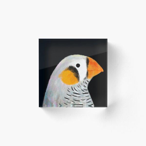 Zebra Finch Bird Acrylic Block