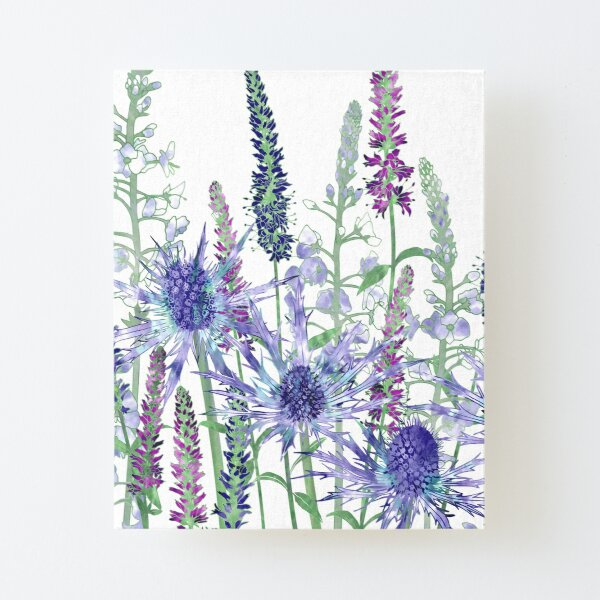 Sea Holly & Veronica Flowers Canvas Mounted Print
