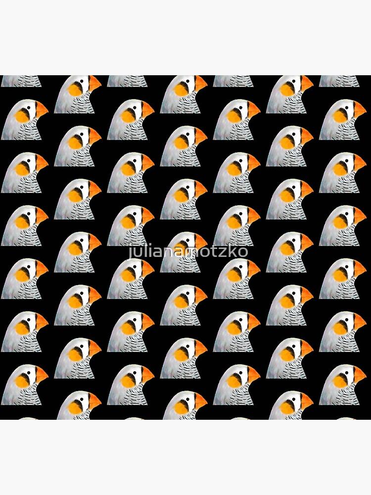 Zebra Finch Bird by julianamotzko