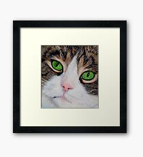 Bright Eyes Framed Print