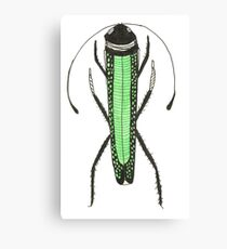 Cute Green Bug Insect Cool Gift Fashion Canvas Print