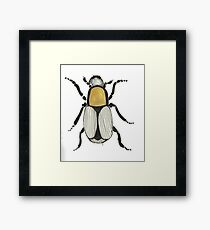 Cool Cute Bug Insect Drawing Framed Print