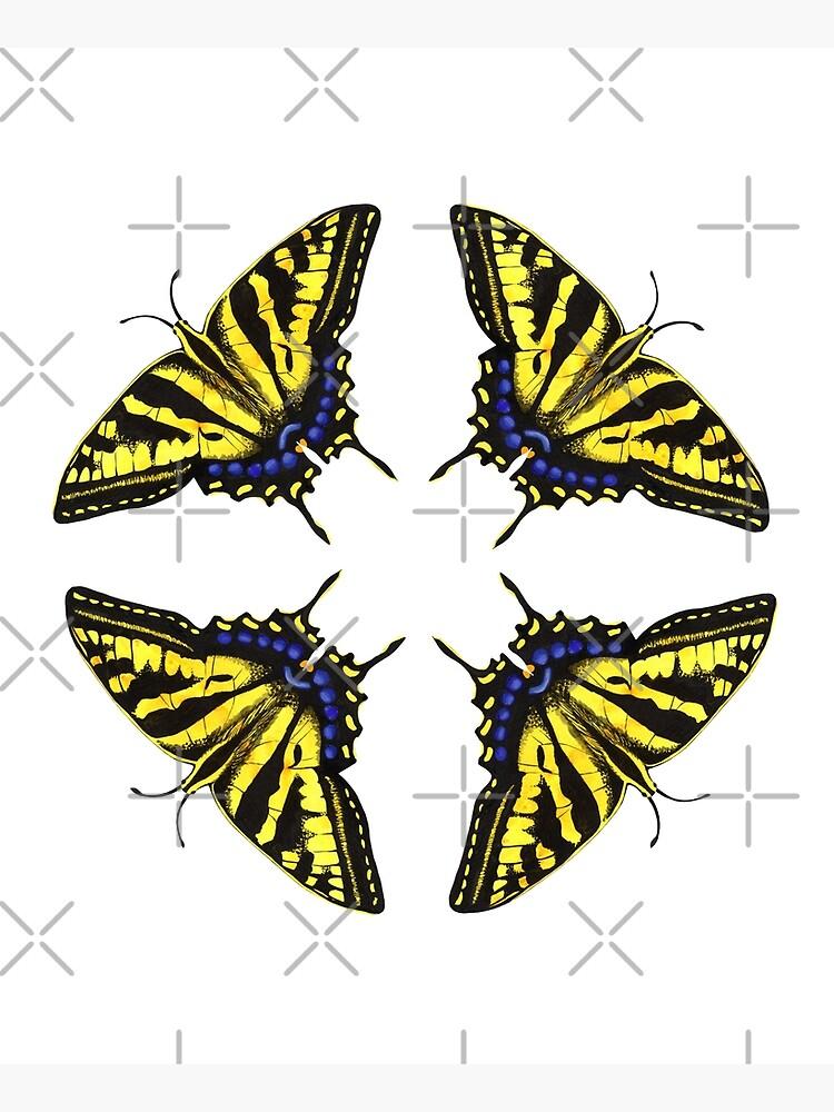 Swallowtail Butterflies   by junebugscorner